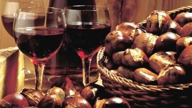"""Photo of Arriva """"l'estate di San Martino"""", e sull'isola """"ogni mosto diventa vino"""""""