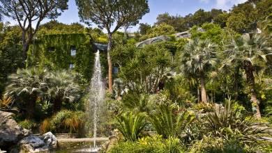 Photo of Giardini La Mortella, visite guidate durante il periodo natalizio