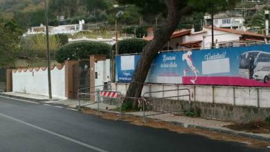 Photo of Via Baiola e quel pino inclinato: a quando la rimozione?