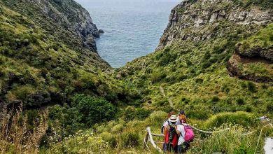 """Photo of Ischia, al via """"Andar per sentieri"""": alla scoperta della natura dell'isola"""