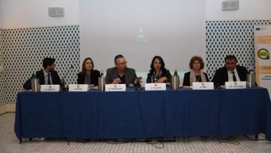 Photo of I giovani e il lavoro, workshop a Casamicciola con la Palmeri