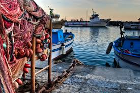 """Photo of Procida, Sos dei pescatori: """"Scompariremo entro un paio di anni"""""""