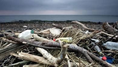"""Photo of La Regione ci """"copia"""" e diventa plastic free"""