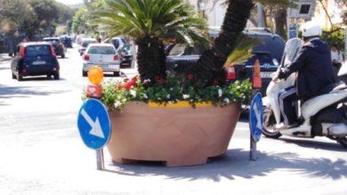 Photo of Enzo Ferrandino: «La lotta al traffico? Una priorità per rendere Ischia più bella»