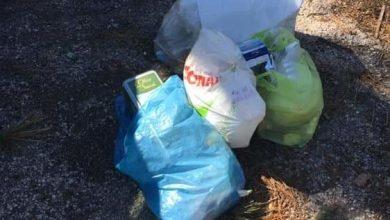 Photo of Verdi e parcheggi sporchi, attacco agli incivili