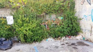 Photo of I rifiuti, gli incivili e la violazione della privacy