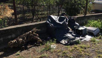 Photo of Dopo la denuncia dei Verdi, pulizia è fatta al Porto e Fondobosso