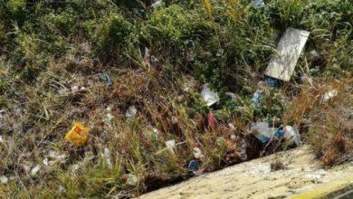 """Photo of Troppe """"falle"""", a Ischia la raccolta rifiuti va rivista e migliorata"""
