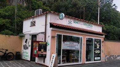 Photo of Cannabis Store a rischio chiusura, Orlando: «Non vendiamo droga, al massimo un farmaco»