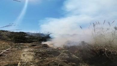 Photo of No ai roghi, scatta la task force dei Carabinieri Forestale