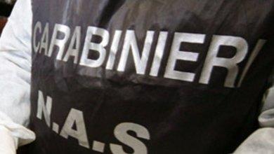 Photo of Nas, sequestrati prodotti ittici a Forio