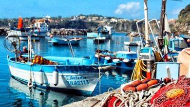 Photo of Guide Naples esalta Procida: isola senza tempo