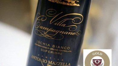 Photo of The Winehunter Gold per Villa Campagnano di Antonio Mazzella