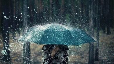 Photo of IL METEO Pioggia e temporali, un lunedì con l'allerta meteo