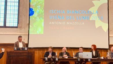 """Photo of Premio """"Sole"""" per il Vigna del Lume delle Cantine Mazzella"""