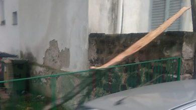Photo of Maltempo, cade ramo nel cortile dell'asilo