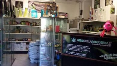 Photo of Emendamento Cannabis light: «I Semi della Discordia? Continueranno a germogliare»