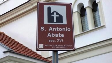 Photo of Oggi tutti  in festa a Sant'Antuono e stasera il calore del falò. Domani Diana, il pontificale del vescovo e l'attesa processione