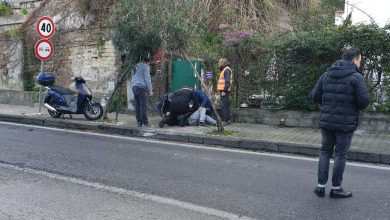 Photo of Non si ferma al posto di blocco, inseguito e arrestato