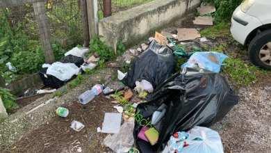 Photo of IL CASO Parcheggio di Fondobosso, i Verdi di nuovo all'attacco