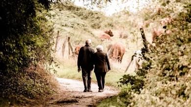 Photo of 3 milioni di lavoratori hanno scelto i Piani Individuali Pensionistici