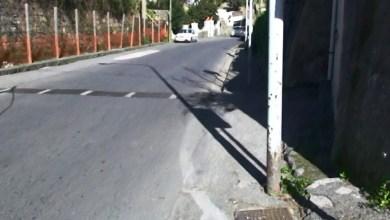 Photo of Palo a rischio crollo a Ischia, la denuncia di Savio