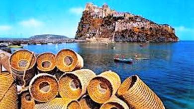 Photo of La fase due frena ancora il fascino del mercato del pesce al Pontile Aragonese I pescatori di Ischia e Procida in difficoltà chiedono cos'è il dopo lockdown