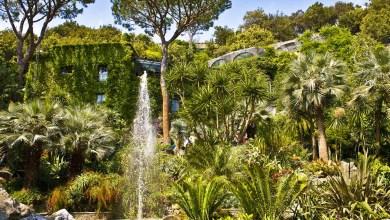 Photo of Giardini La Mortella, da martedi 16 giugno la riapertura al pubblico