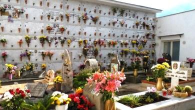 Photo of Enzo Ferrandino  domani  riapre il cimitero di Ischia