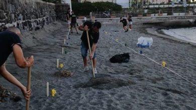Photo of Spostati i segnaposto per disabili dalla spiaggia della Mandra, l'ira del sindaco