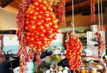 Photo of Le sorprendenti difese dell'isola contadina Le cure migliori per l'oro rosso dei nostri orti