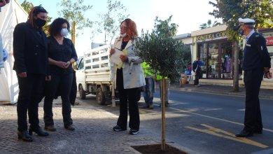 Photo of L'INIZIATIVA Un albero per Peppe Buono a un anno dalla sua scomparsa
