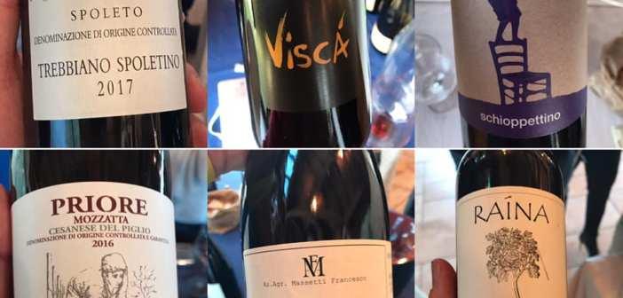 Assisi – ViniVeri 2019 anteprima di Cerea, i miei sei migliori assaggi su 102 vini degustati
