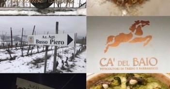 Quattro aziende, un ristorante e una pizzeria, in un giorno, si poteva e si può… in particolare tra Roero e Langhe