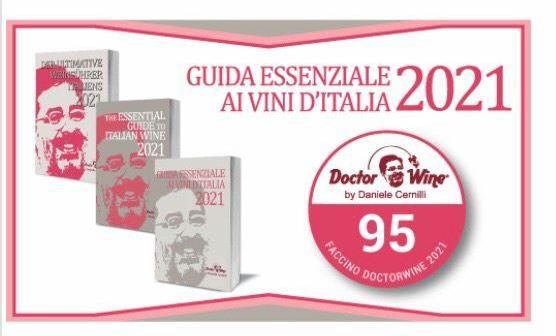 I faccini per il DoctorWine con 95/100 (secondo elenco) della Guida Essenziale ai Vini d'Italia 2021… con un mio piccolo commento vino per vino