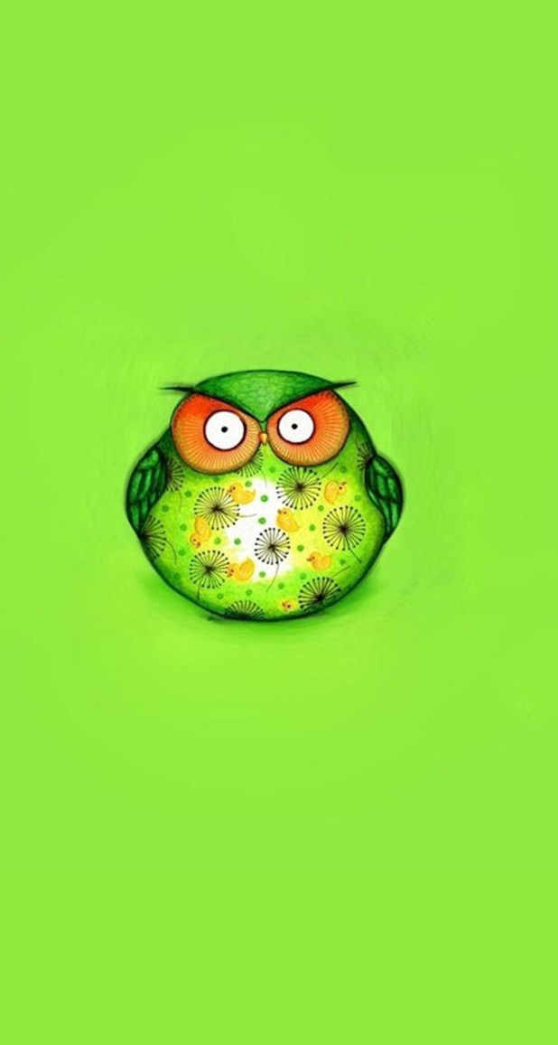 Owl Iphone 5s Wallpapers Ipad One