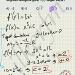 #lys 2013 matematik 43. soru çözüm