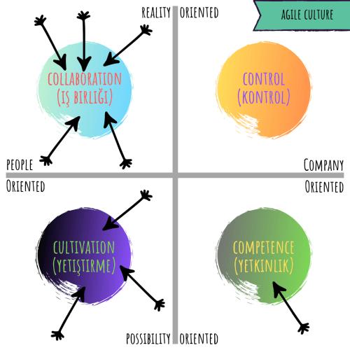 shneider model - agile culture