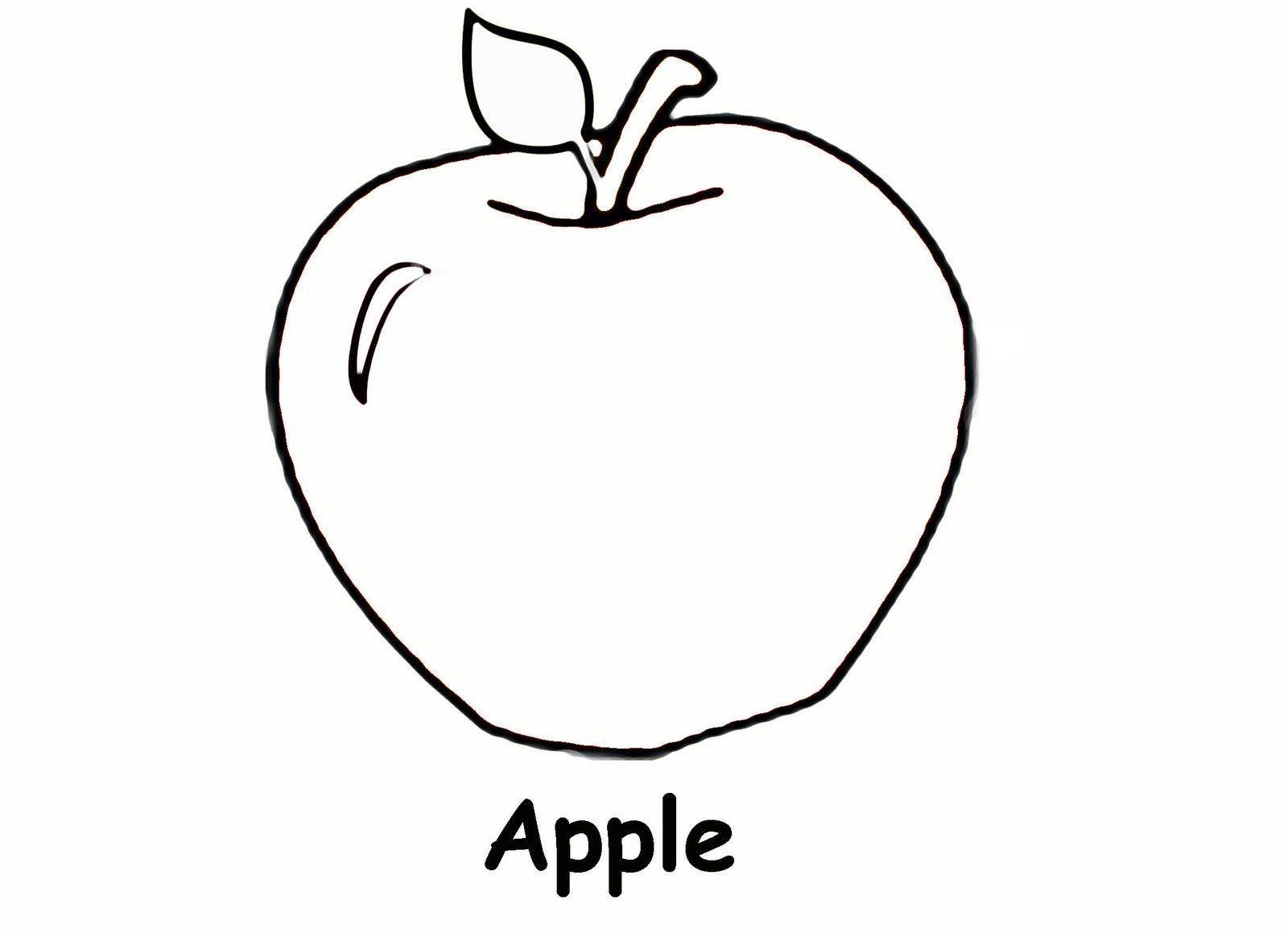 diagram of an apple worksheet audi a4 1 8t engine elma Şablonları sınıf Öğretmenleri İçin Ücretsiz Özgün