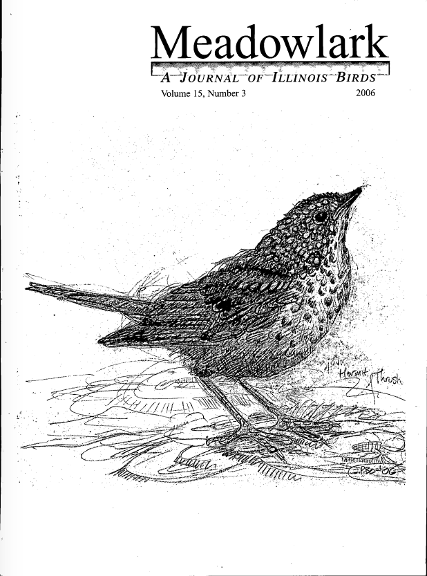 Meadowlark Archives « Illinois Ornithological Society