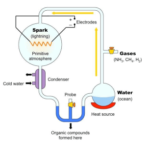 An apparatus designed to simulate the creation of life on Earth