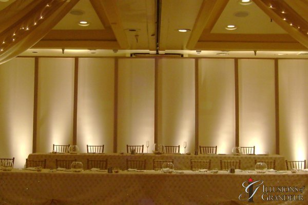 Wedding Screens Behind Head Table