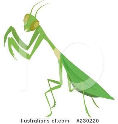 praying mantis clipart #230220