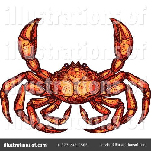 small resolution of royalty free rf crab clipart illustration by vector tradition sm stock sample