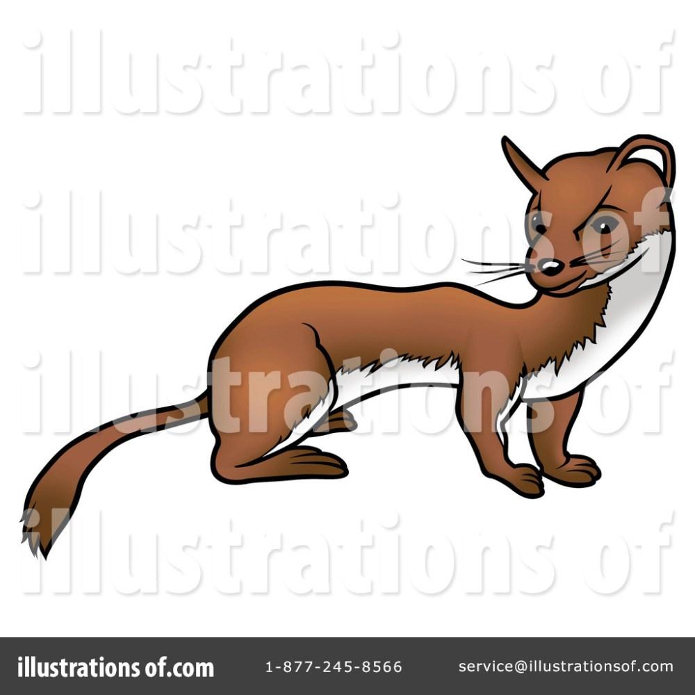 medium resolution of royalty free rf ferret clipart illustration 36566 by dero