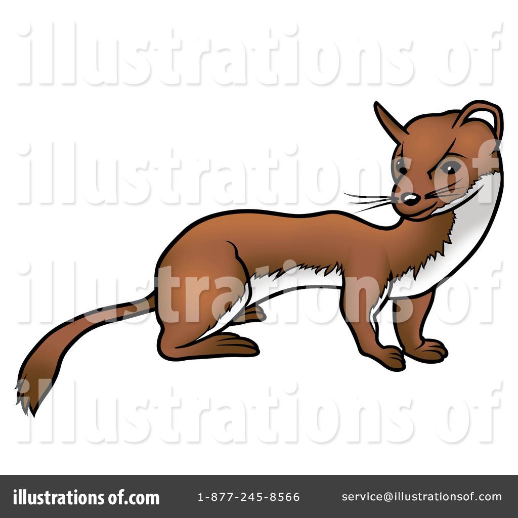 hight resolution of royalty free rf ferret clipart illustration 36566 by dero