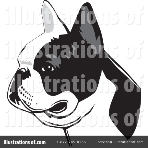 small resolution of royalty free rf french bulldog clipart illustration by david rey stock sample