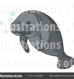 royalty free rf manatee clipart illustration 1344310 by graphics rf [ 1024 x 1024 Pixel ]