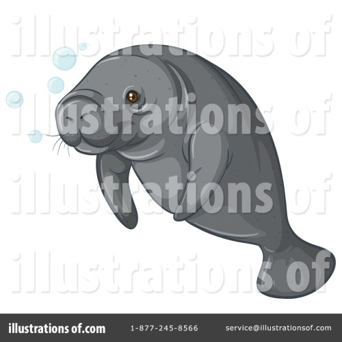 small resolution of royalty free rf manatee clipart illustration 1344310 by graphics rf
