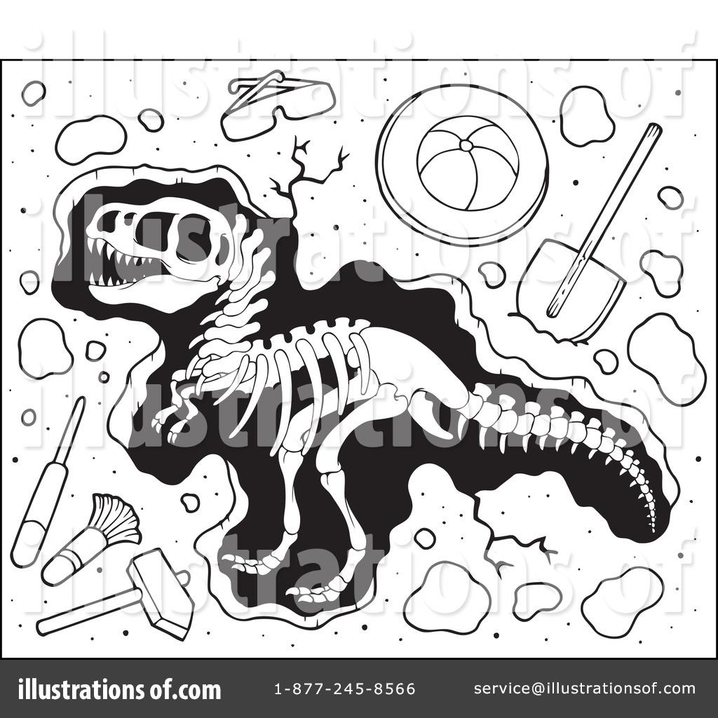Paleontology Clipart